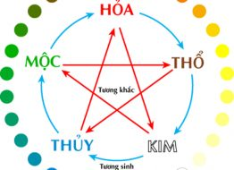 menh-kim-moc-thuy-hoa-tho-hop-voi-mau-nao