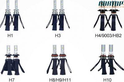 7 loại chân bóng đèn ô tô phổ biến nhất tại Việt Nam bạn cần biết.